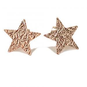 Orecchini a stella in argento rose' a bottoncino collezione Shiny - gallery
