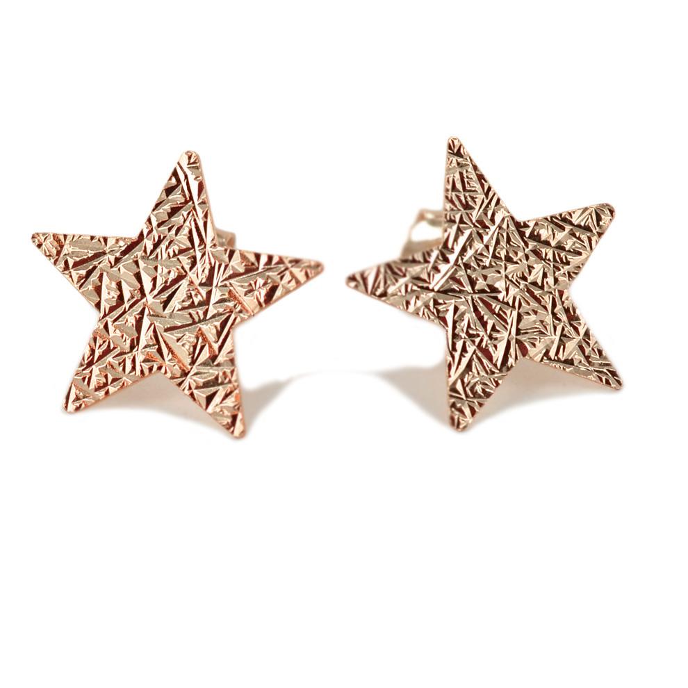 Orecchini a stella in argento rose' a bottoncino collezione Shiny