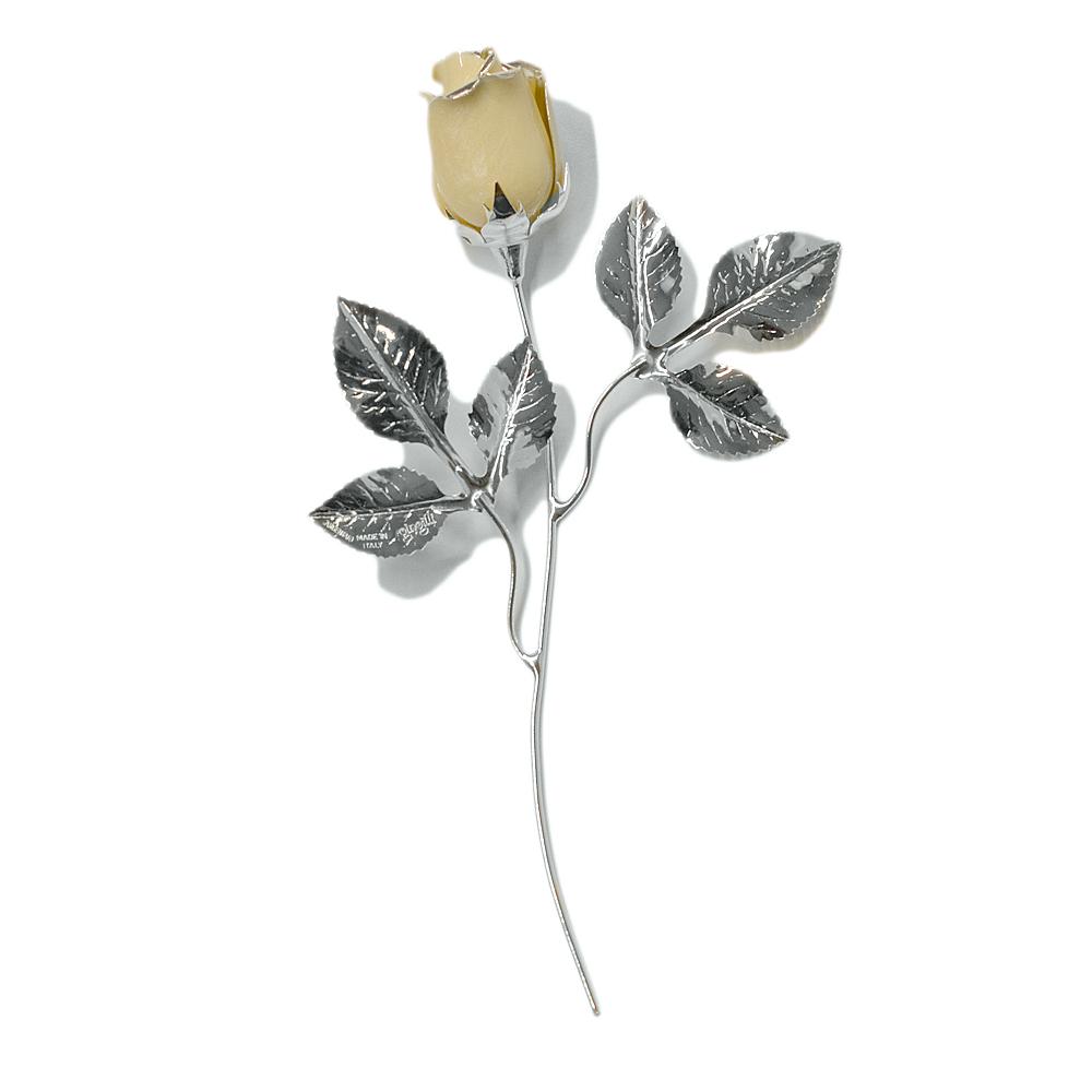 Rosa profumata argentata 16 cm con smalto ecru